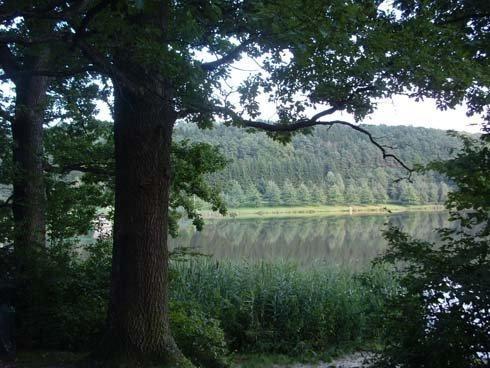 A Hársas-tó az Őrség legszebb, fürdésre, horgászásra és tóparti sétára egyaránt alkalmas tava